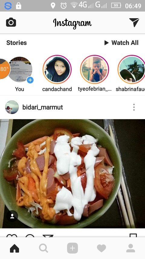 Tampilan Instagram Feed