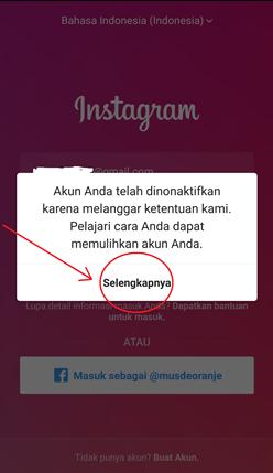 ciri-ciri jasa follower Instagram berkualitas
